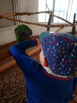 W ostatnim czasie staramy się odwiedzać ciekawe miejsca w poszukiwaniu zainteresowań, hobby Adasia. Na załączonym obrazku wycieczka do Papużarni :) http://papugarniacarmen.pl/papugarnia/katowice/